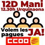 Manifestació 12D i concentracions